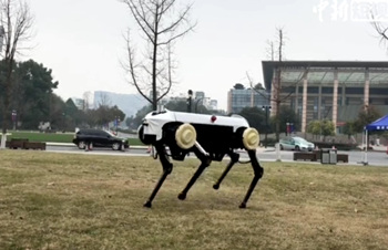 Chinese university unveils robot dog