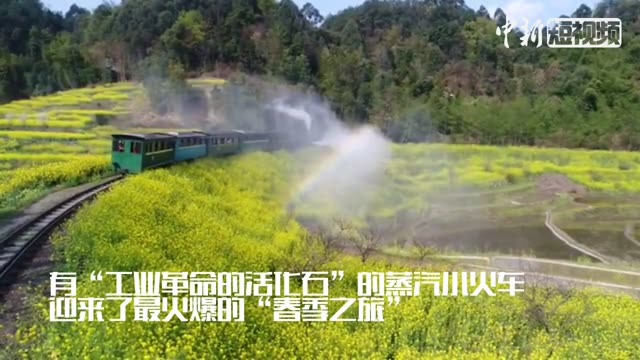 All aboard! Travel back in time among Sichuan's blooming flowers