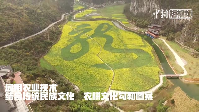 Amazing! Giant Chinese characters, patterns cut out of flower fields