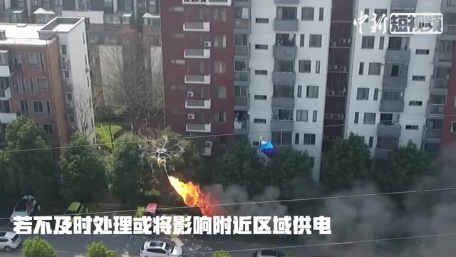 Flame-throwing drone burns kite off power line
