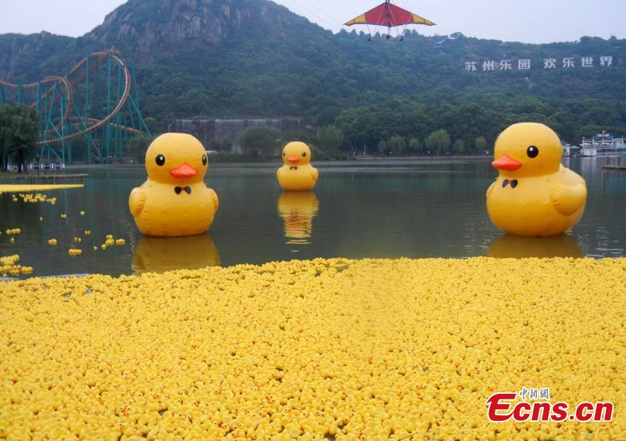 Over 30,000 baby 'rubber ducks' witnessed in Suzhou