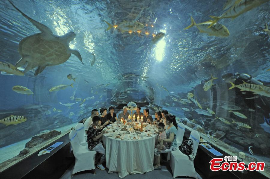 Visitors have meal at tunnel aquarium in Tianjin