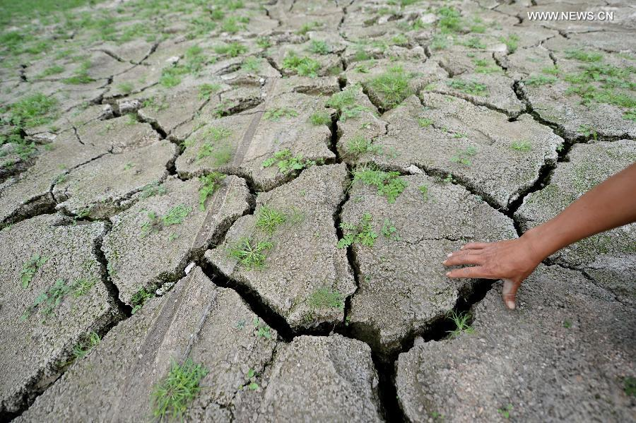 Liaoning suffers the most severe drought since 1951
