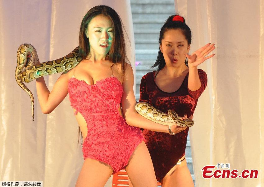 Snake and sexy women: new stunt at housing fair in NE China
