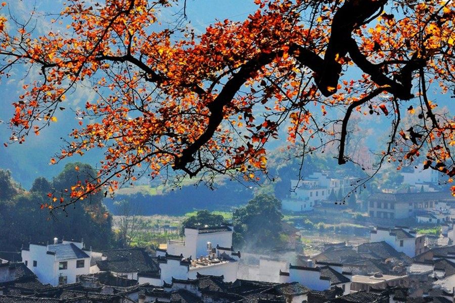Picturesque autumn scenery of Changxi Village in Wuyuan