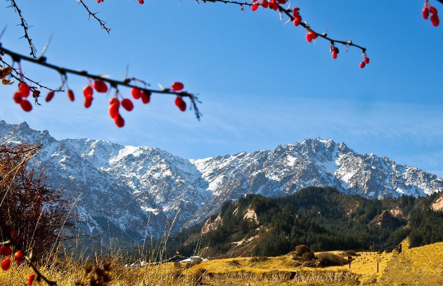 Autumn scenery of Qilian Mountain