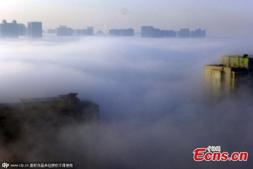 Heavy fog turns Shenyang 'fairyland'