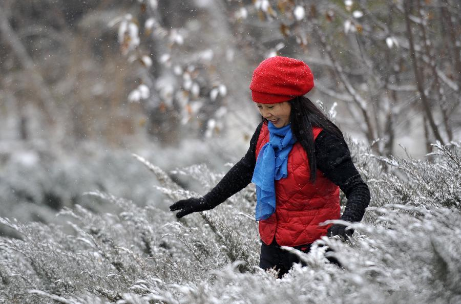 Cold front brings snowfall to NW China's Yinchuan