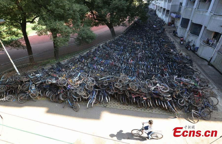 'Bicycle graveyard' seen in Hunan university