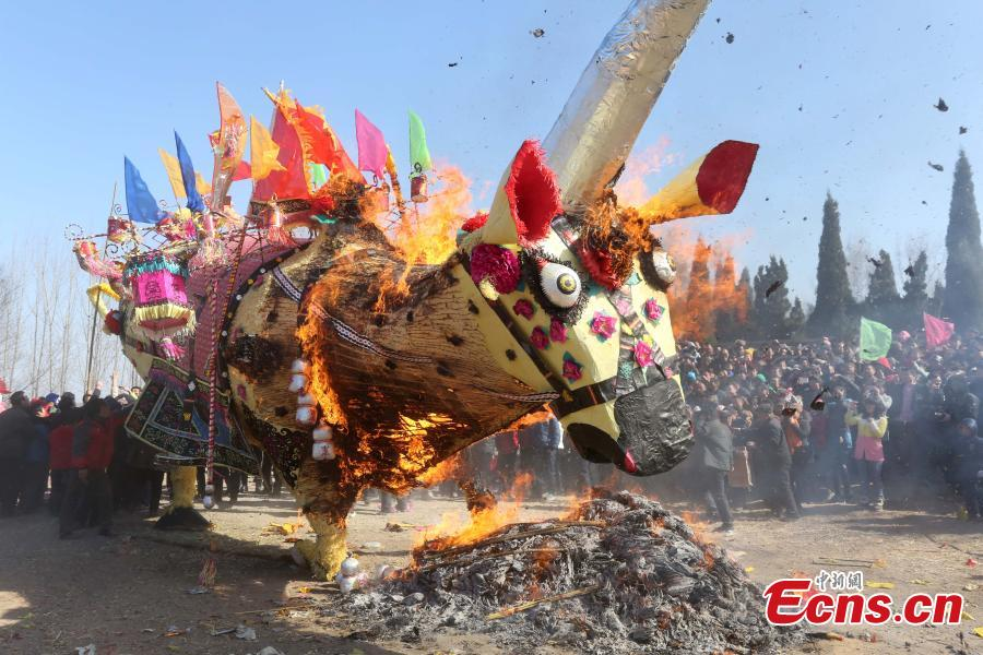 Paper cattle burnt in folk festival for happiness