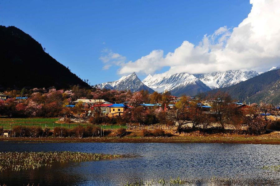 Picturesque spring scenery in Bomi County, China's Tibet