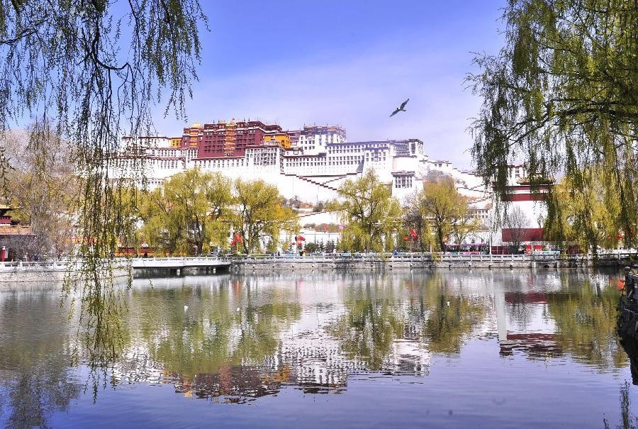 Spring scenery of the Potala Palace in China's Lhasa