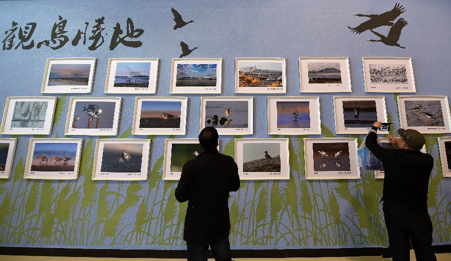 Bird watching festival launched in NE China