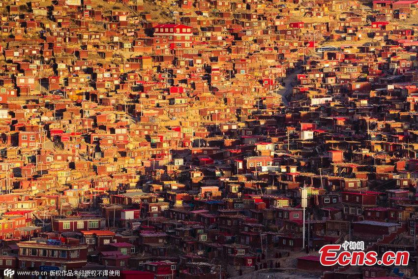 Thousands study at SW China Buddhist institute