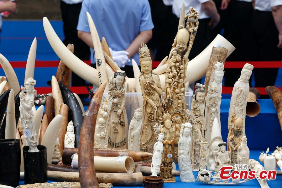 China destroys 6.6 tonnes of seized ivory