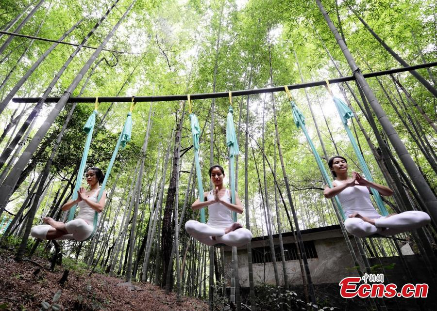 Yoga performers show strength and beauty in bamboo forest
