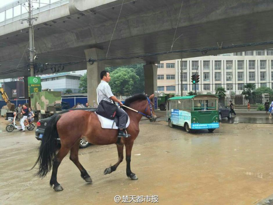 Man rides horse to work to avoid traffic jams