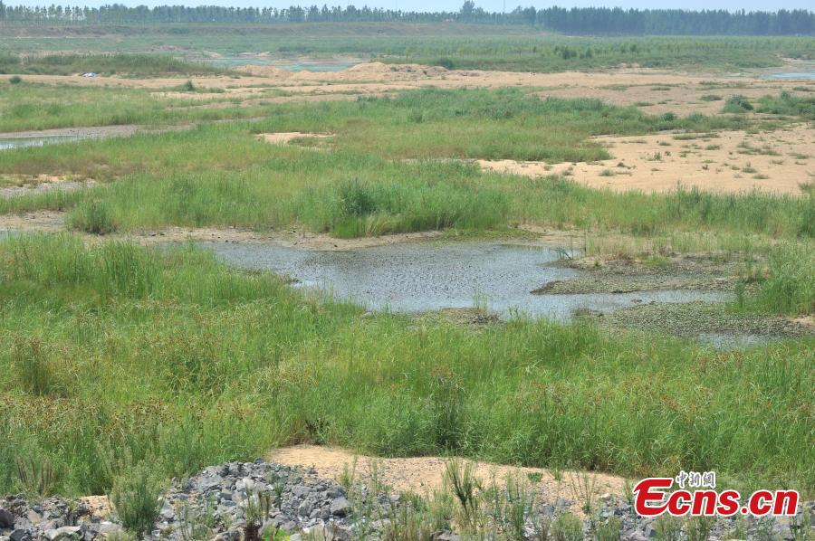 Coastal city Qingdao suffers from drought