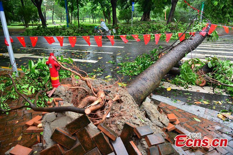 Typhoon Mujigae attacks Guangdong