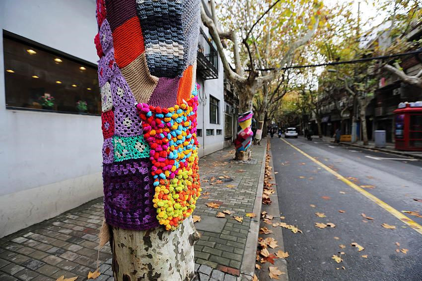 Trees in Shanghai 'wear' sweaters for the winter