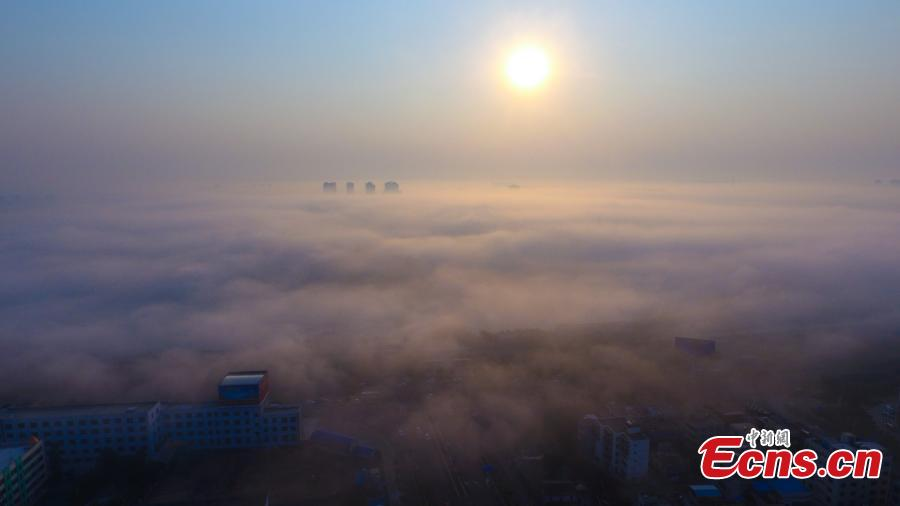 Fog gives southern city a new look