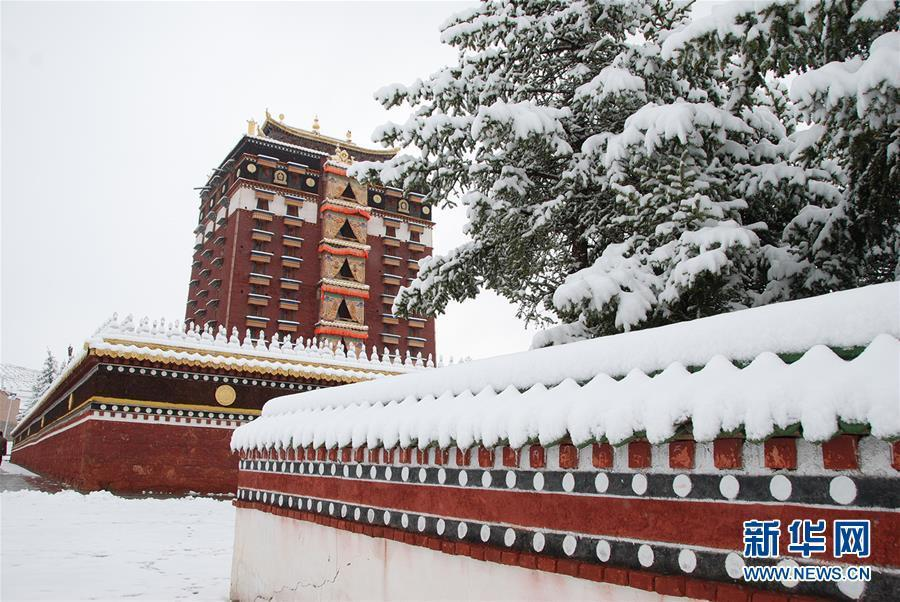 Snow hits NW China city