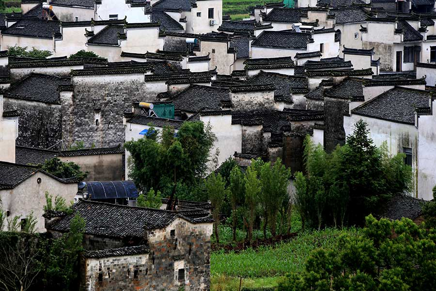 Summer scene at Hongcun village in Anhui province