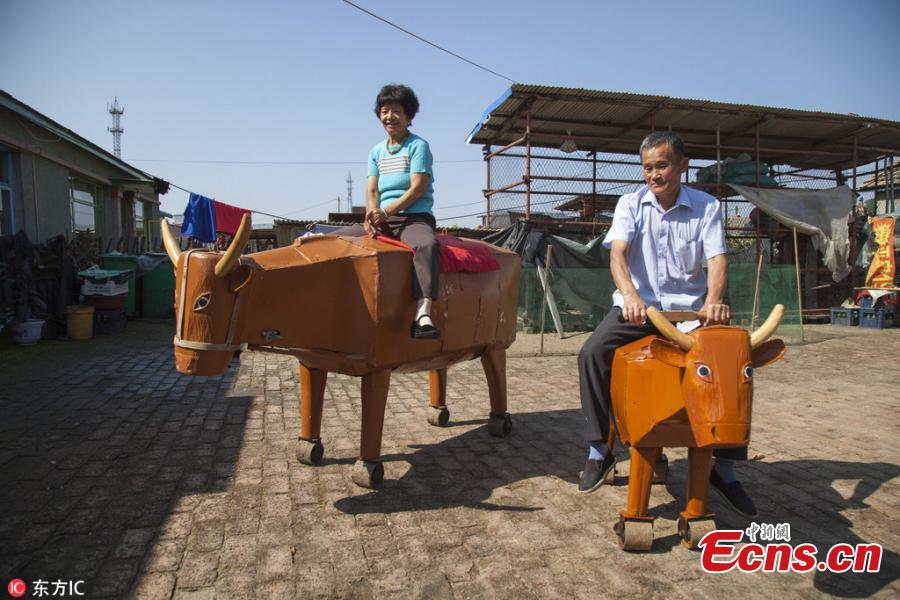 Carpenter makes latest version of wooden ox