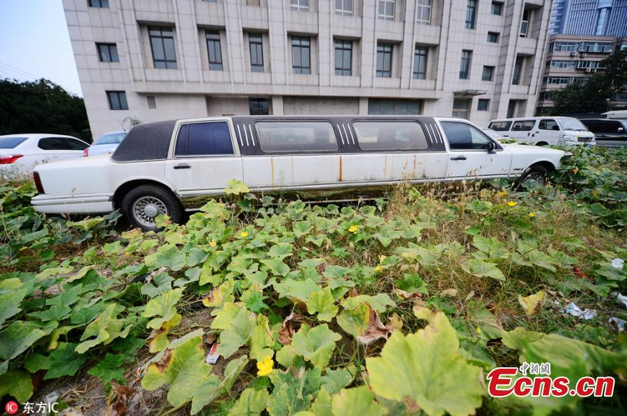 Lincoln stretch-limo abandoned in East China city