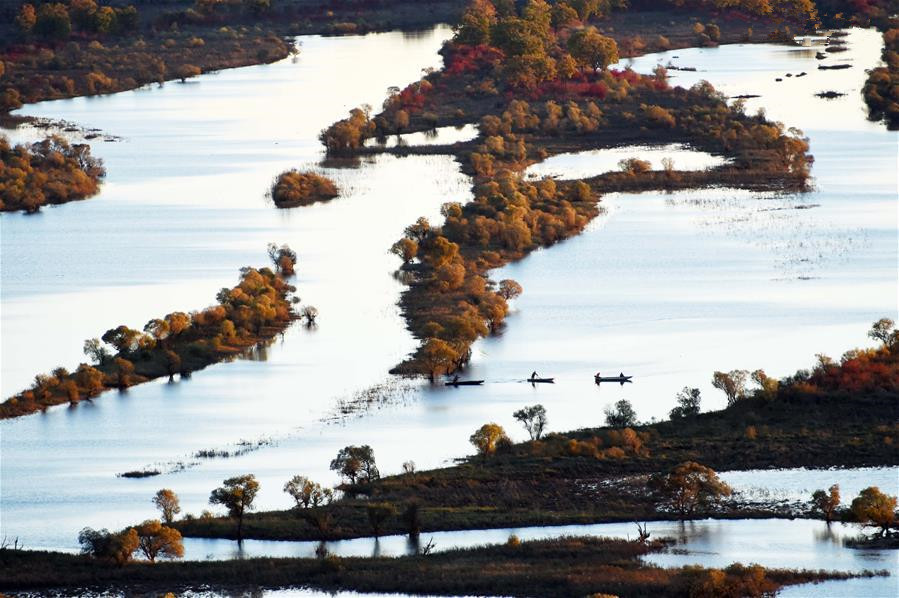 Scenery of Zhenbao Island wetland in Heilongjiang