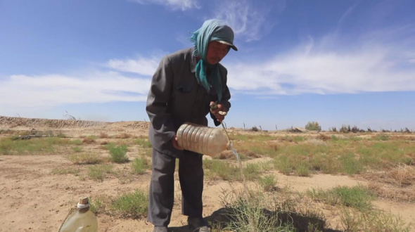 A man's mission to make the Gobi desert green
