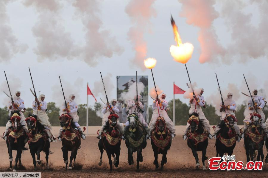 Traditional equestrian show at Morocco horse fair