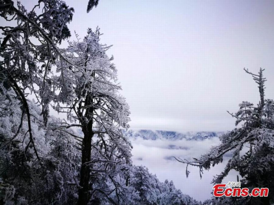 Snowy scenery in Sichuan shows the best side of winter