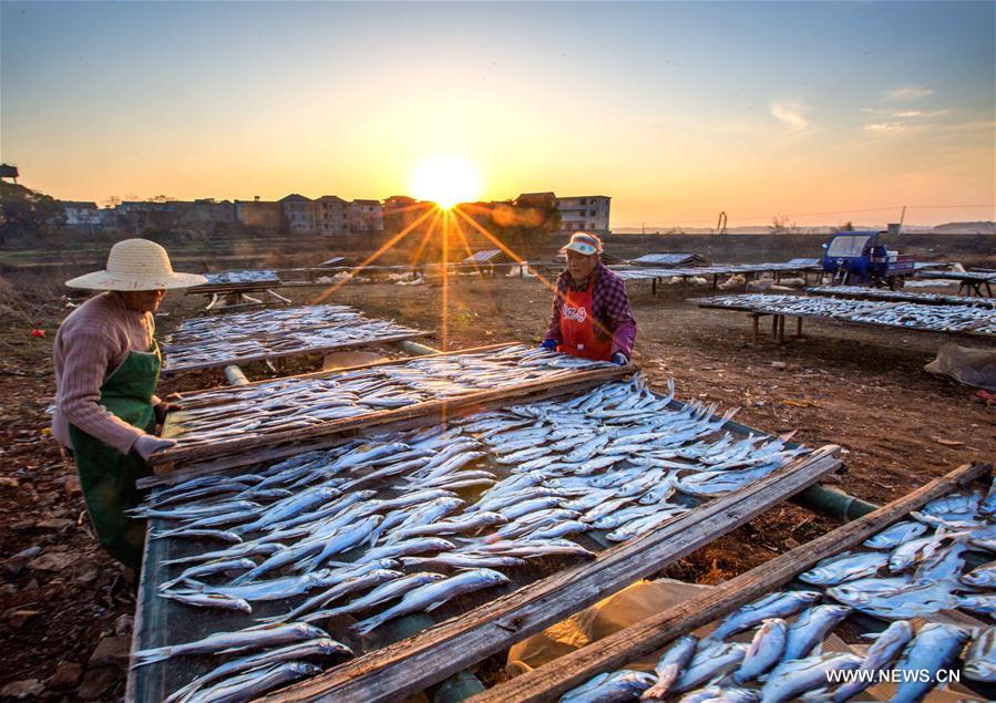 Good weather for pickling, drying fish in China's Jiangxi
