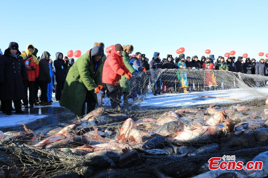 Heilongjiang lake in bumper fishing season