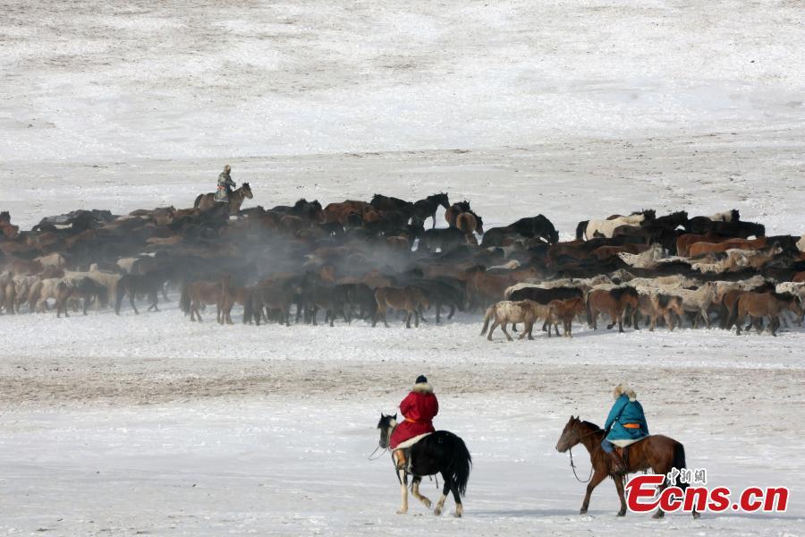 Nadam Fair opens in northern snow land