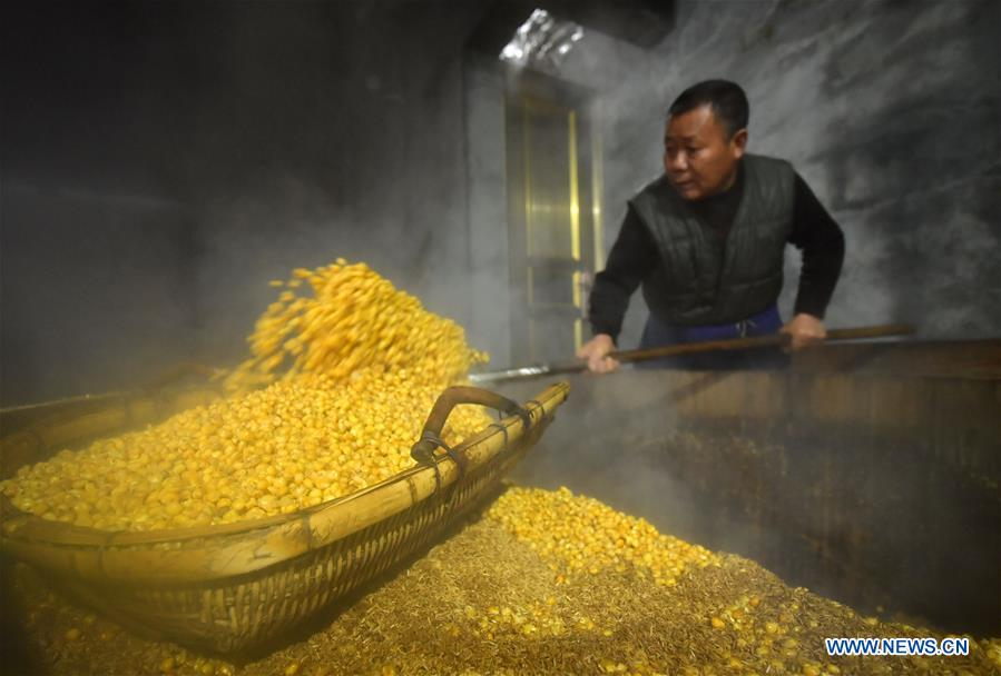 A look at production process of corn wine in Hubei