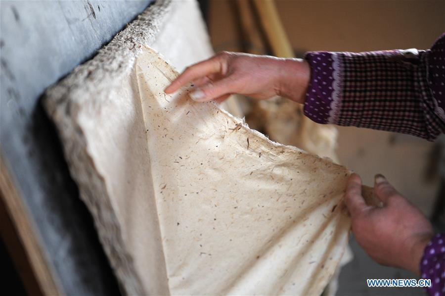 Villagers innovate method of traditional Chinese papermaking