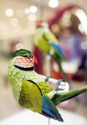 Lifelike paper birds exhibited in Hong Kong