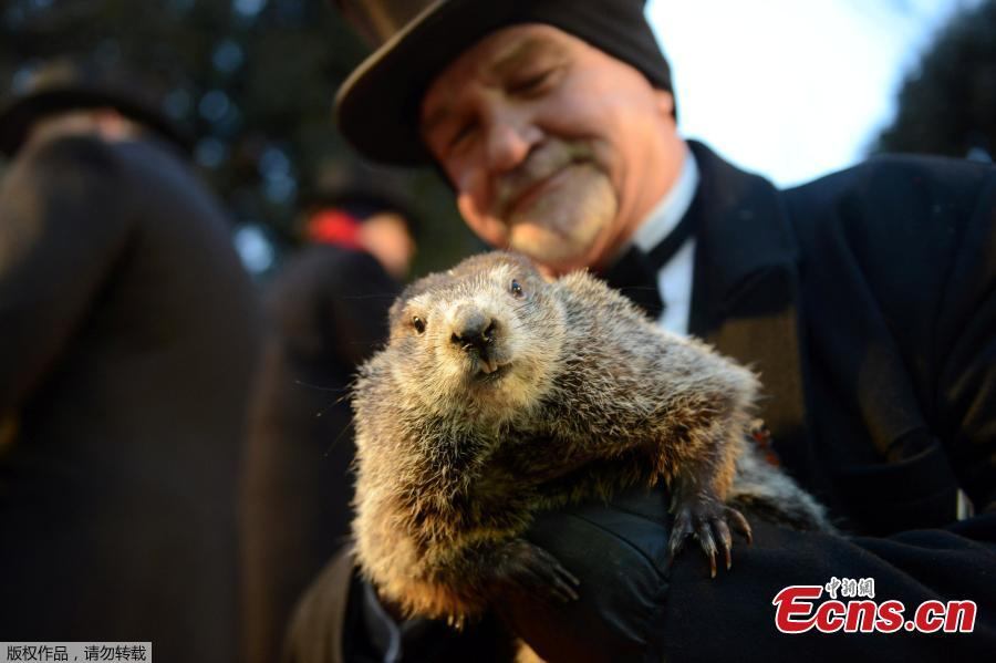 Groundhog Day 2018 results: 6 more weeks of winter