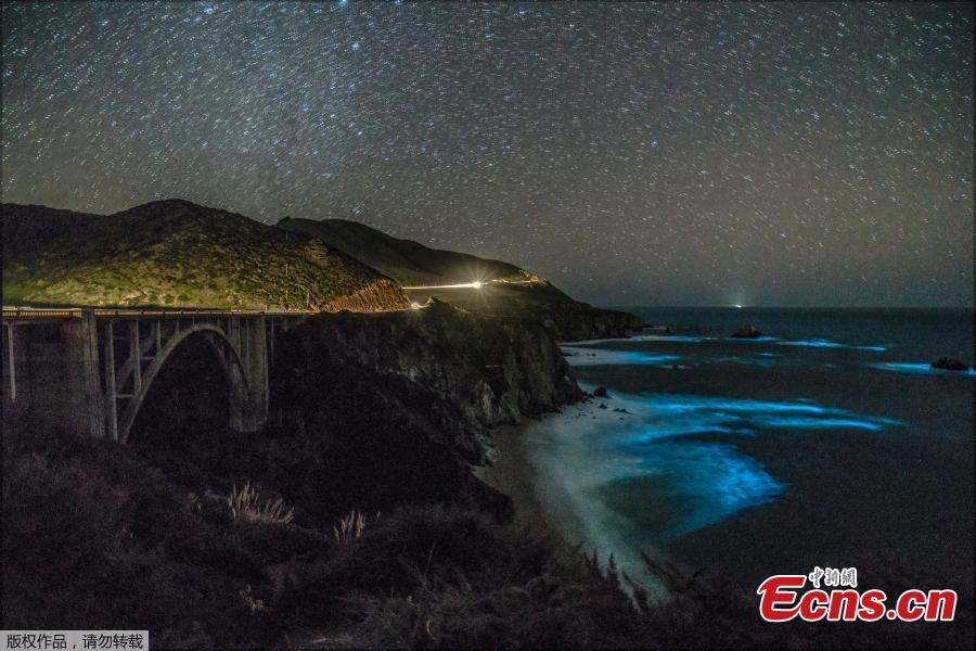 Bioluminescent waves glowing in Big Sur