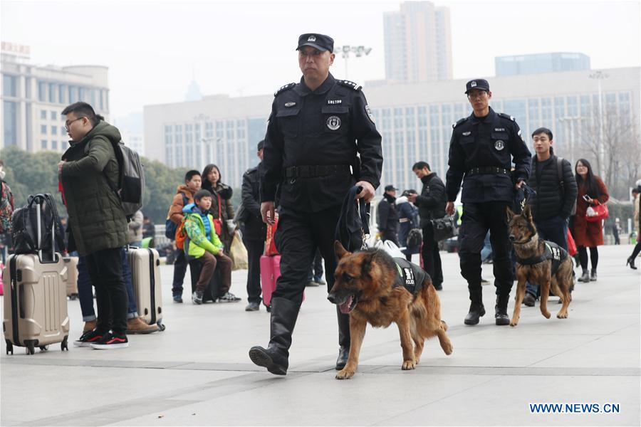 Police dogs patrol railway station during Spring Festival travel rush