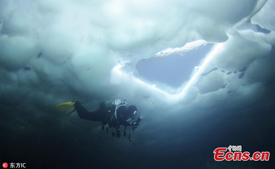 Diving among drifting ice in Okhotsk sea