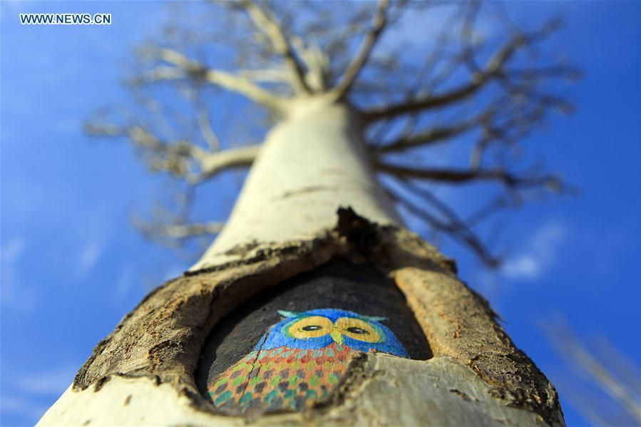 Drawings painted on trees in Yinchuan City, NW China's Ningxia