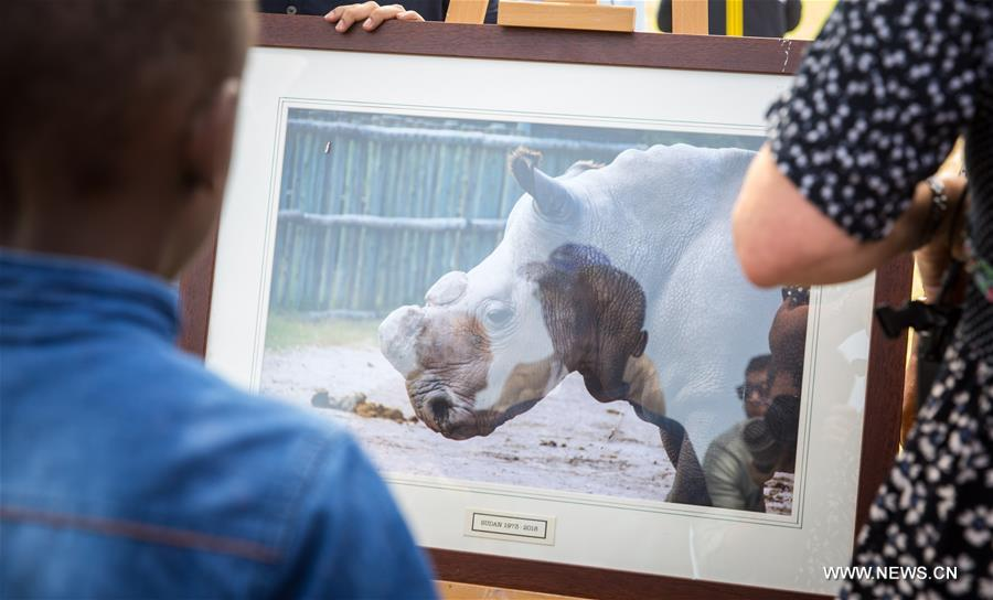 Kenya holds memorial service to honor late male northern white rhino