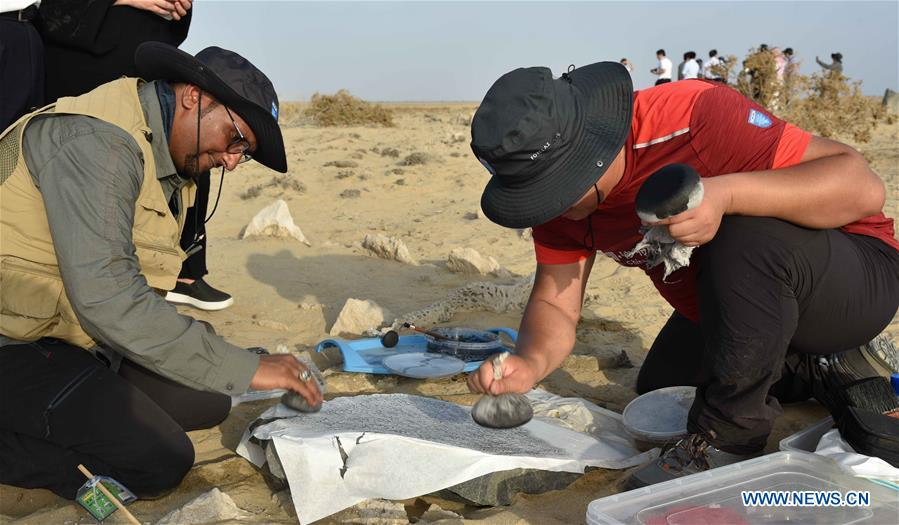 China, Saudi Arabia form joint archaeological team