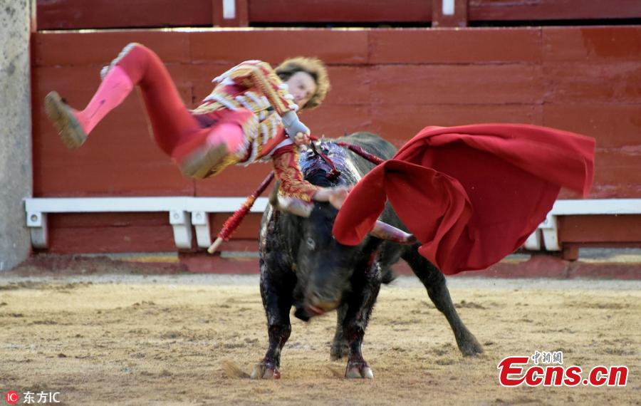 Spanish bullfighter in horrifying moment
