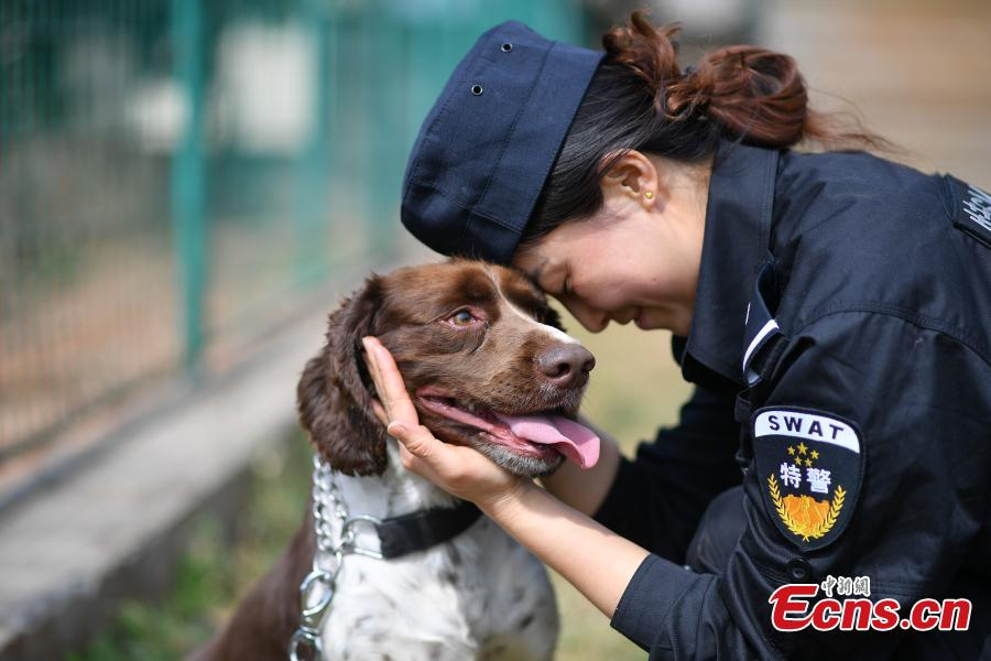 Woman makes progress training police dog