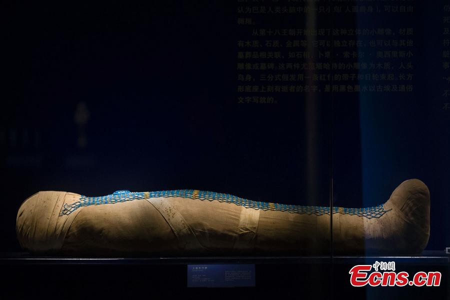 Exhibition showcases Egyptian civilization in Taiyuan