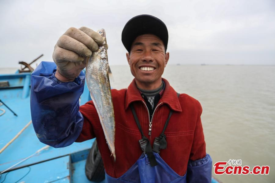 Fishing season begins for rare Yangtze River fish